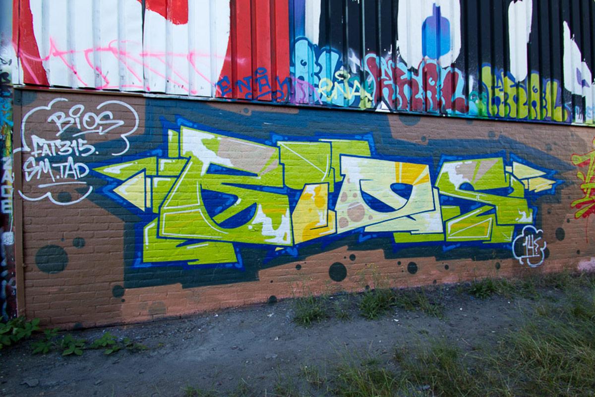 bios-4